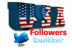 I will provide you 1500 USA Twitter Follower OR Re-tweet OR Favorites