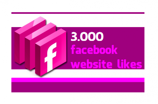 Provide you 3,000 Facebook website or blog like