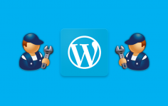 I will help to solve any WordPress issue