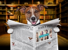 I will make the cute dog hold newspaper with your logo or website name