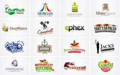 I will design TWO Logos in 24 HOURS as a Recognized, Award Winning Logo Designer