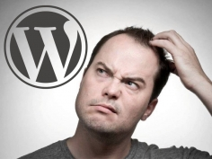 I will fix wordpress problems