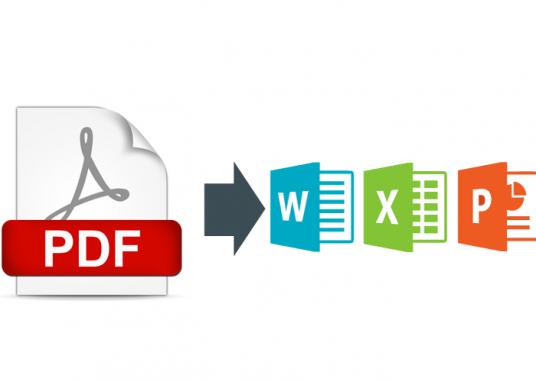 I will Convert  PDF to WORD, EXCEL, POWERPOINT and more