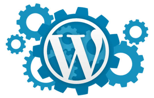 I will setup WordPress ,Theme and Plugins