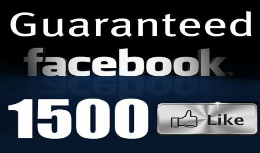I will add 1500 REAL Facebook fan page likes