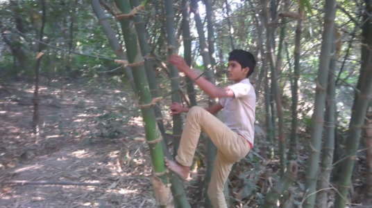 climb on Very Long Bamboo Tree and find your Message