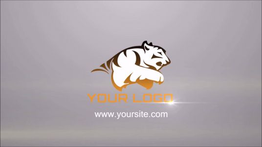 make Professional Logo Animation Video Intro in HD