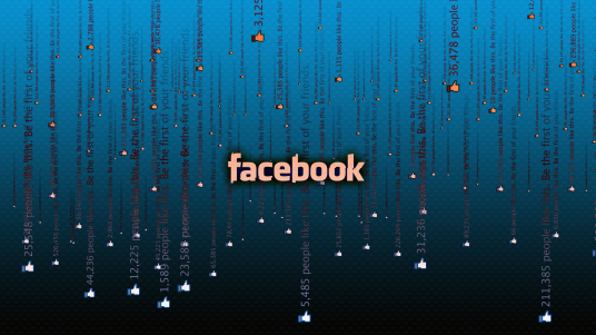 I will promote PERMANENT Facebook Likes