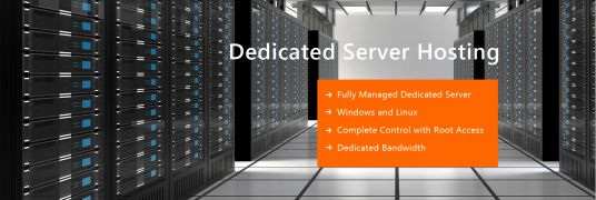 I will provide dedicated website hosting server with cpanel