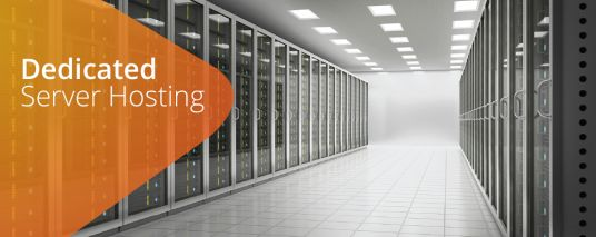 provide dedicated website hosting server with cpanel