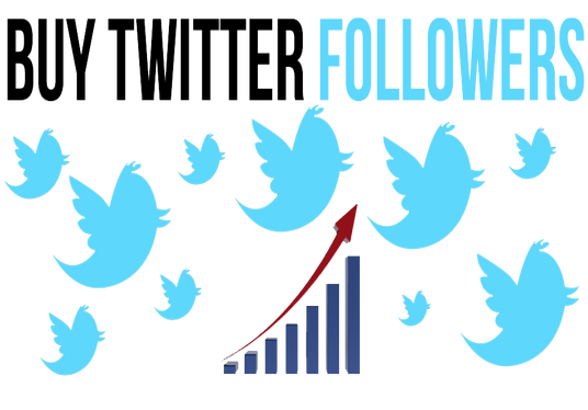 I will give you 10,000 REAL and active Twitter followers