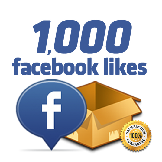I will give you 1000 plus fan page likes within 24 hours
