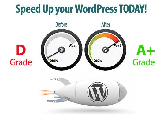 I will Speed Optimize your WordPress