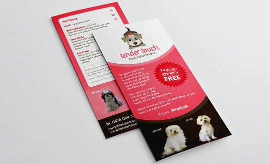 I will Create Professional Flyer, Brochure, Rack Cards and Leaflet