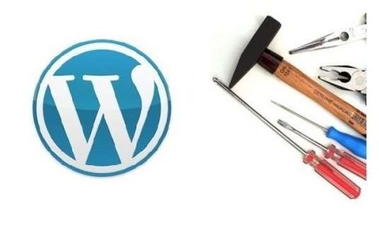 I will fix any issue in your wordpress theme or plugin