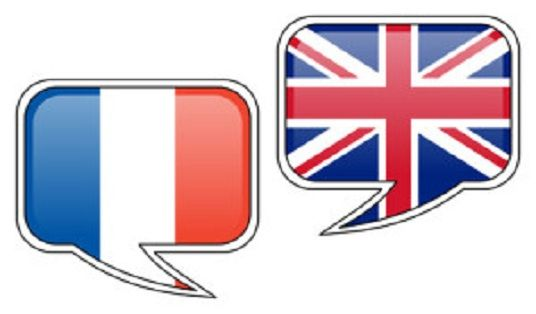 Do Human Translation Of 500 words  From English To French or Vice Versa