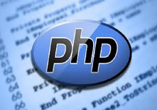 Edit your website php,js,barcode,mlm tree,software,fix problem,increase  speed for £5 : raviajudiya93 - fivesquid