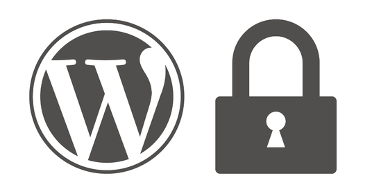 properly secure your Wordpress Website