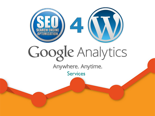 I will install Web master tool or Google Analytics on your wordpress site
