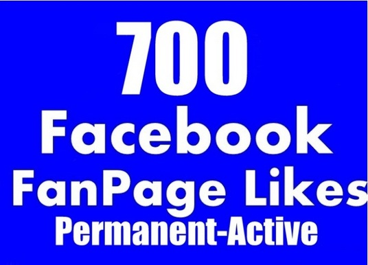 I will add 700 facebook permanent real likes