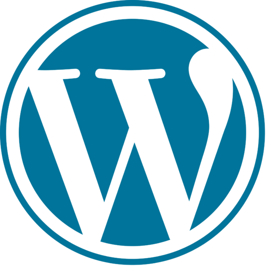 I will  create a WORDPRESS website and customize it
