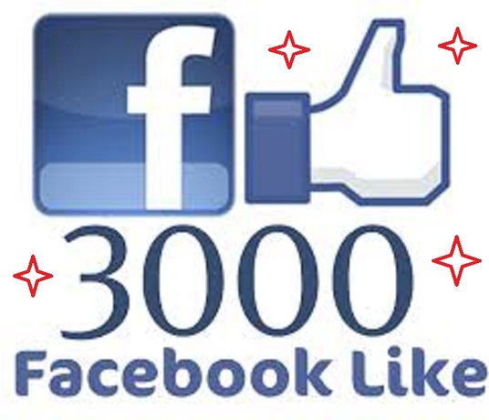 I will add REAL Active 3000 Photo or Post or video Facebook Likes