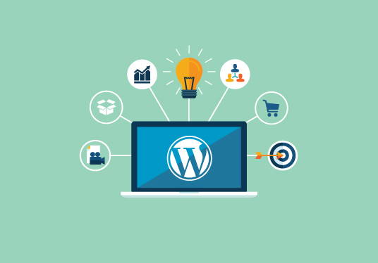 I will install & setup a Wordpress site