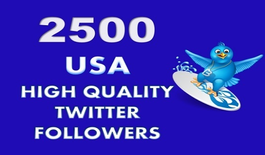 I will provide you 2500 unique **USA** TWITTER FOLLOWERS  PERMANENT ! SAFE !