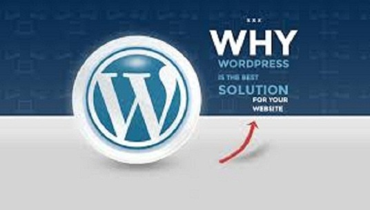 I will resolve all issue related WordPress