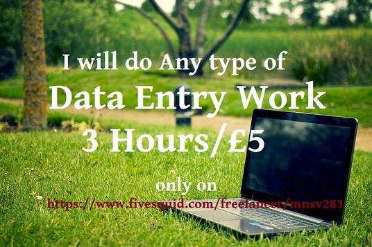 I will do any type of data entry work, 3 hours