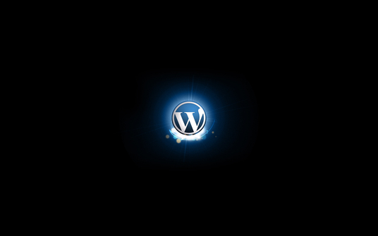 I will install wordpress and customize your site