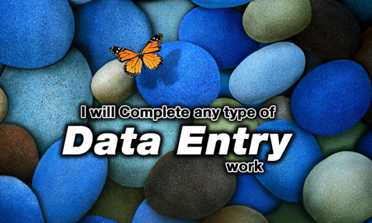 I will  complete any type of Data Entry work, 3 hours