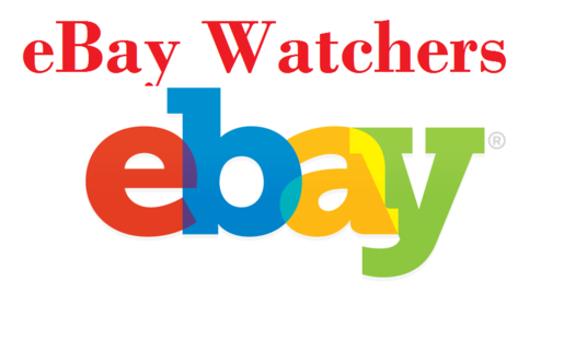 add 300 Safe Ebay watchers to boost your Ebay sales and SEO