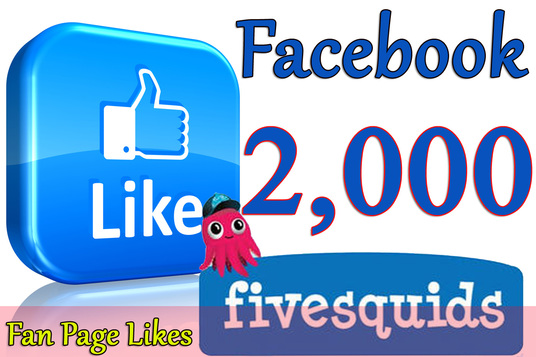 I will Give you 2,000+Instantly started Active Facebook Fan Page likes