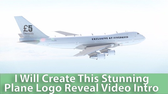 place your logo or text on luxury business plane