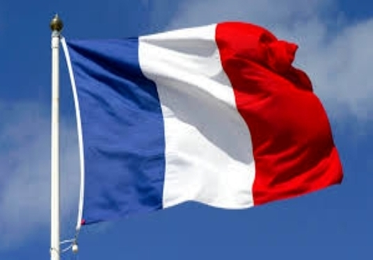 translate french  english  write letters  cv  articles  short