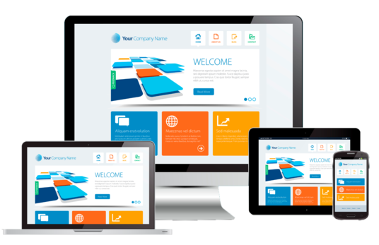 I will build a professional mobile ready Website and host it for you