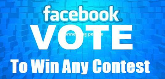 I will  give You 100%  Real 100+ USA Facebook Votes