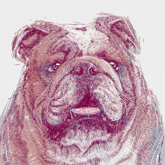 I will draw and paint style for your Animals