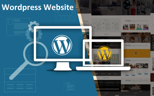 I will build you a wordpress website