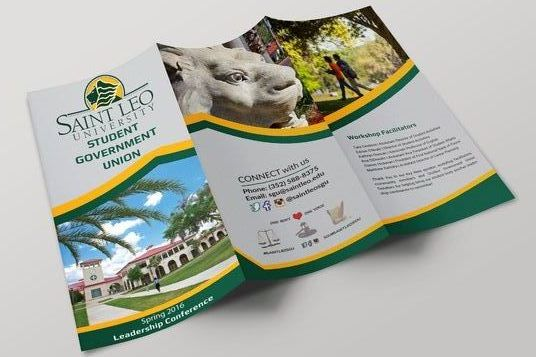 I will design EYE Catching  Brochure or Flyer for your company