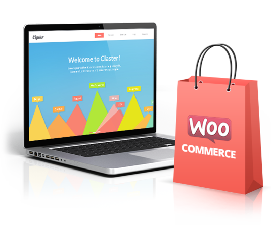 I will Install and configure woocommerce for wordpress ecommerce site