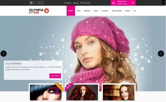 I will build eCommerce website store