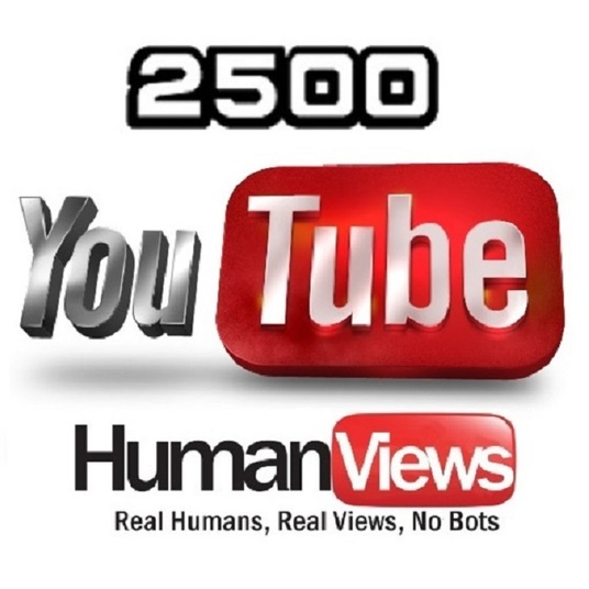 I will Give you 2500 high retention non drip views for your youtube video