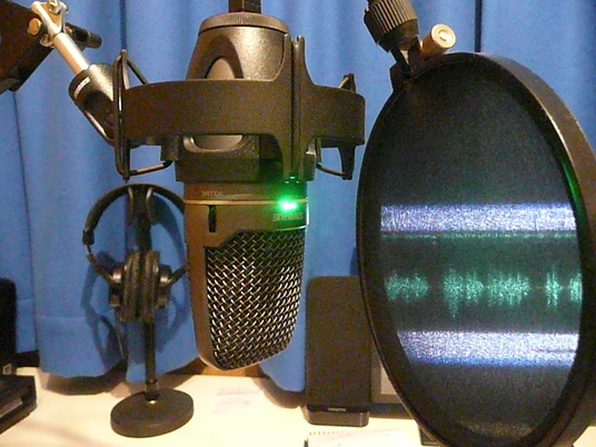 I will provide a 1 minute voice-over (150 - 180 words) in 24-48 hours