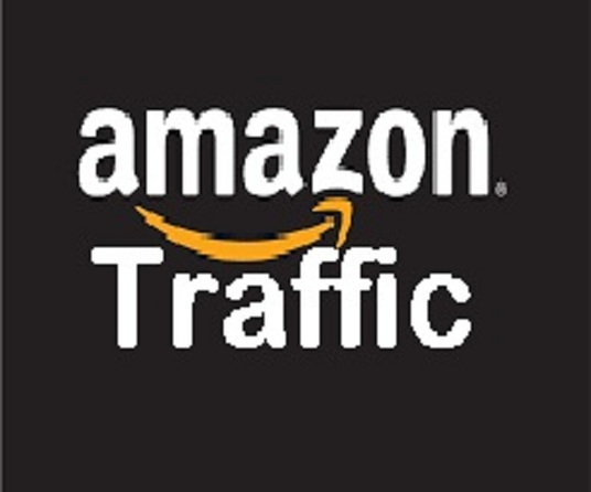 I will    drive 5000 Visitors to your  AMAZON  human organic Traffic with proof