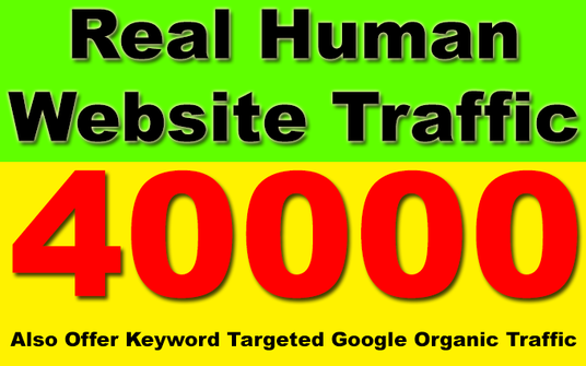 send 40000 Real Human Traffic for your website