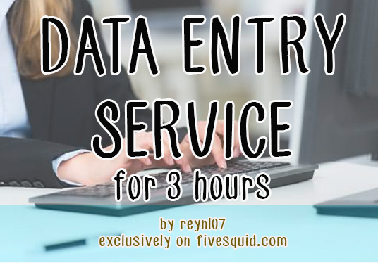I will do any type of data entry work for 3 hours