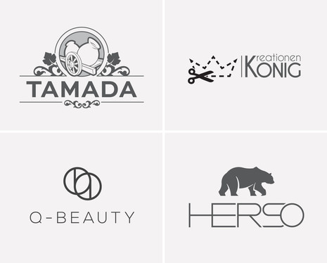 design 2 professional Logo for you within 15 hours