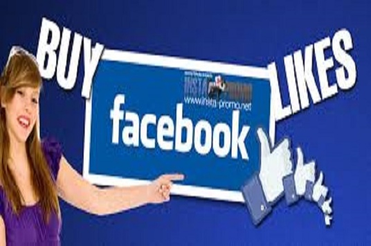 I will do 100 Facebook fan page likes